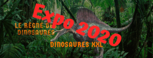 Exposition 2020